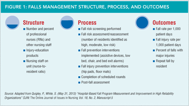 Falls Management Structure, Process, and Outcomes